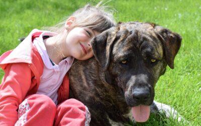 Las mejores razas de perro para vivir con niños